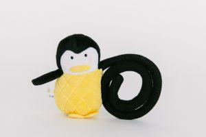 Phoxi-tog-Kameratier-Pinguin