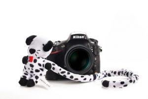Kameratierchen Kindergartenfotografie